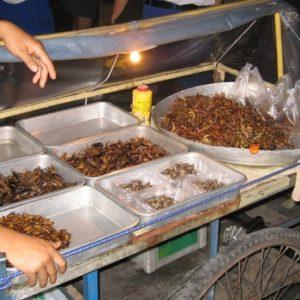 Food Expedition Bangkok